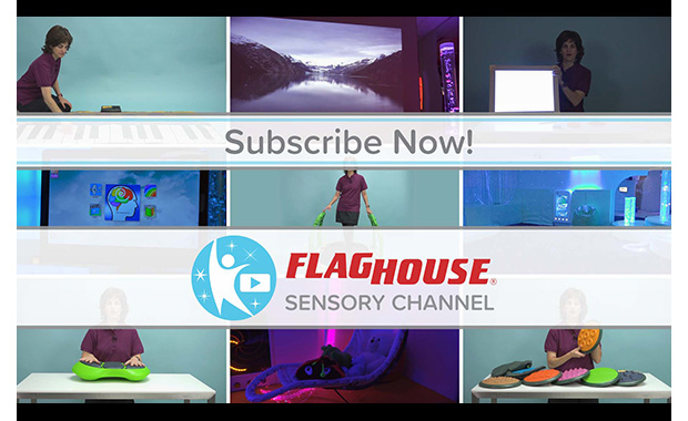 FlagHouse Sensory Channel