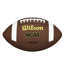 "Wilson® Premium Composite Leather Football -  ""TDY"" Youth Size"