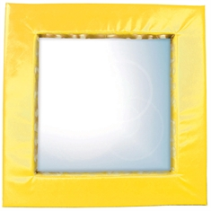 Mirror with Cushisoned Frame