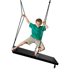 TheraGym® Seesaw Swing