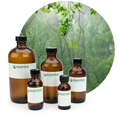 Essential Oil Blend Forest - 1oz