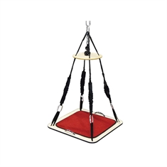 TheraGym® Multi-Purpose Platform Swing