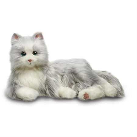 Companion Pets - Silver w/white Mits Cat