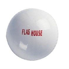 Field Hockey Practice Ball